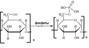 phosphoration of cellulose